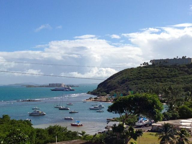 Views of Caribbean Sea, other islands, El Conquistador Resort & the Harbor below from garden outside