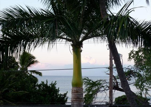 The palm trees lull your evening cocktail on the lanai. - Kailua-Kona OCEANFRONT on Alii Dr.!  2nd level Ocean view, elevator, too - Kalaoa - rentals