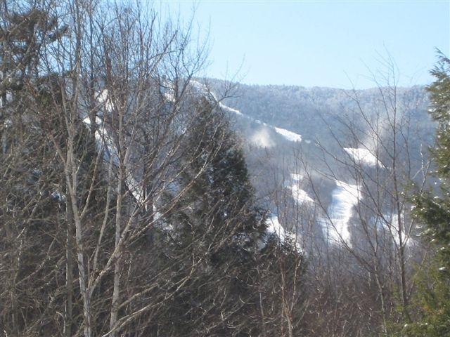 Sugarbush/Wedding Summer base for family fun/Farmers Market/Hike/Bike/Swim/Celebrate Summer! - Image 1 - Fayston - rentals