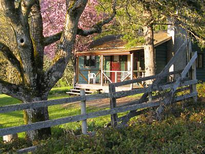 The Green Cottage is a recently renovated, classic country style guesthouse.