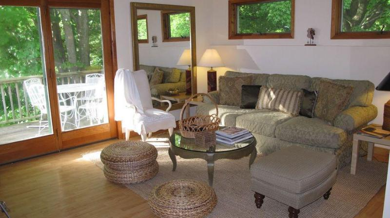 Living Room leads to outdoor deck for summer Dining/Reading/Relaxing