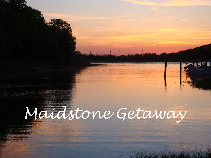 Sunset view from dock - Private waterfront setting, kayaks, walk to beach - East Hampton - rentals