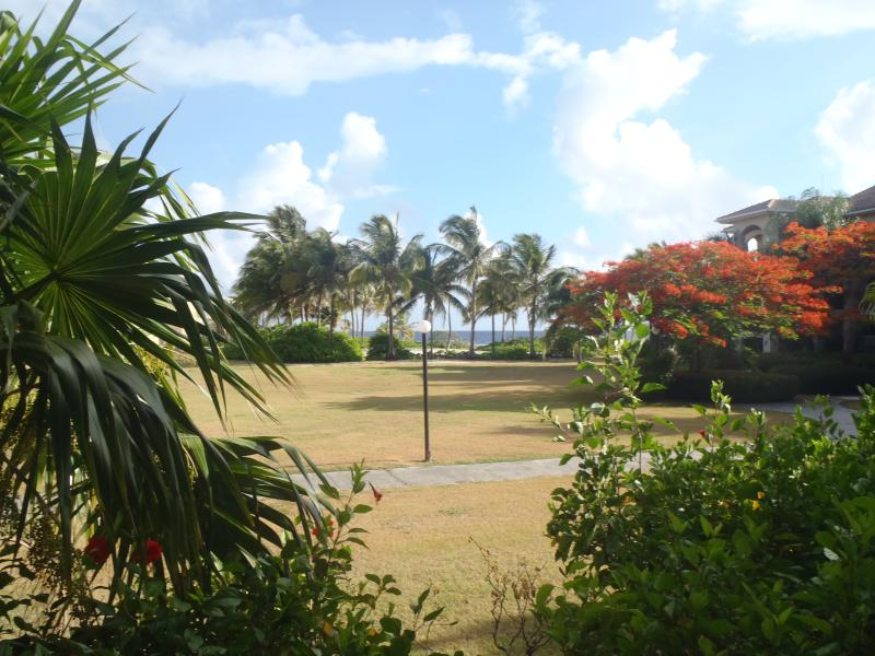 You can see the courtyard, beach and the ocean while relaxing on the patio. - Dolphin's Paradise at Pelican Cove: St. Croix USVI - Christiansted - rentals