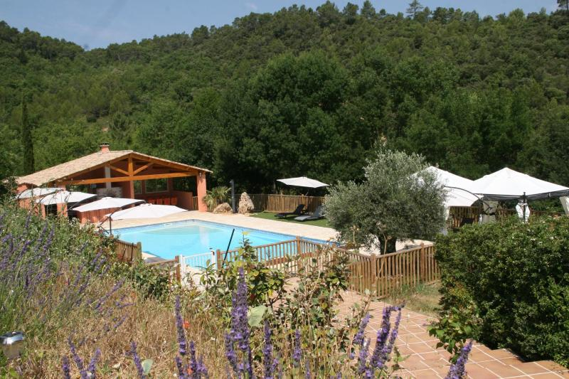 The pool - Gite de la Sauge **** - Brignoles - rentals