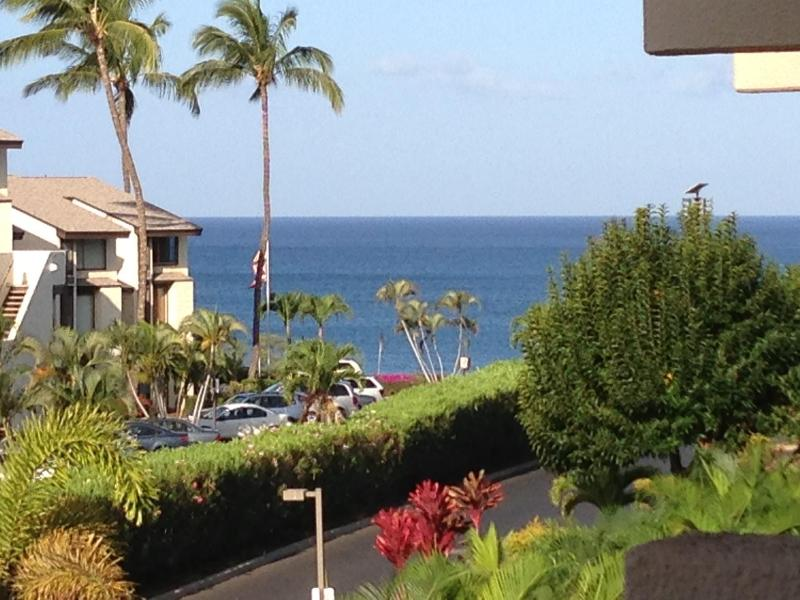 Your view from the Lanai down to the Ocean.