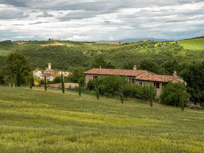 The house from the fields - Family friendly country house with pool - apt1 - San Venanzo - rentals