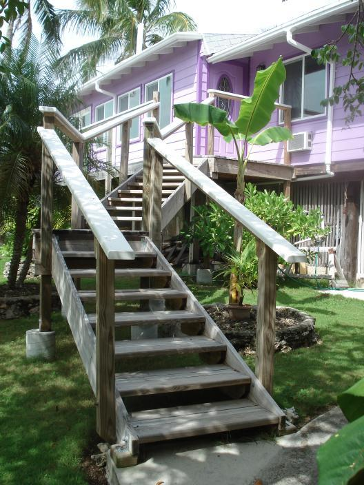 Front stairs to front door and front walkway. Note small-elevated stair steps -- easy to walk up