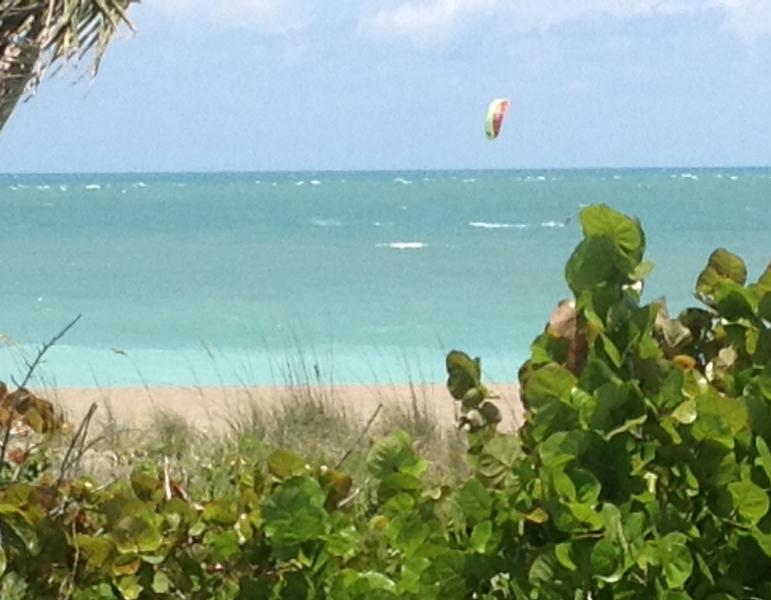 View from Sea Sparkle Suites Beachfront Vacation Rentals on Tropical Hutchinson Island Florida