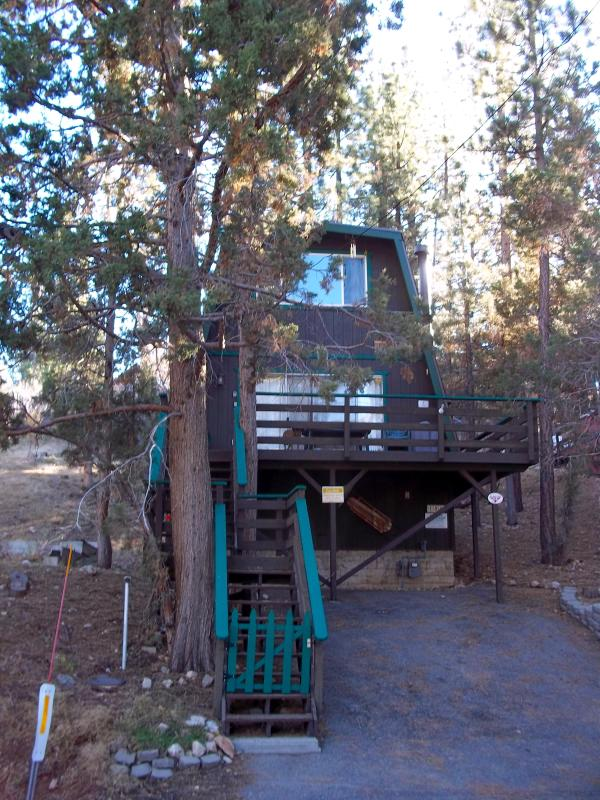 Outside view of Bair's Treehouse