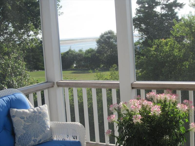 View from screened porch
