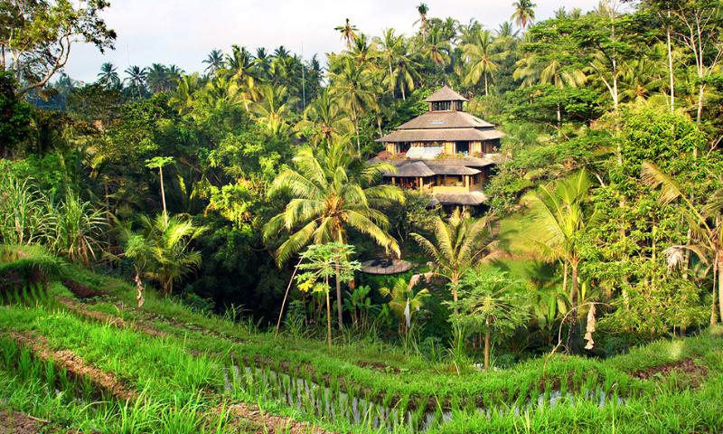 The main house, Villa Pelangi from across the river and rice fields