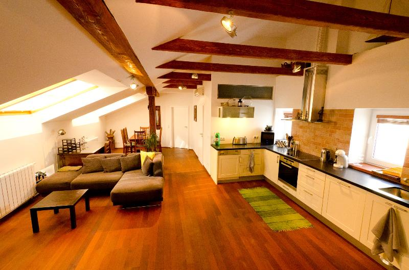 Exclusive apartment in the hearth of Prague. Bright, spacious living room and fully equipped kitchen