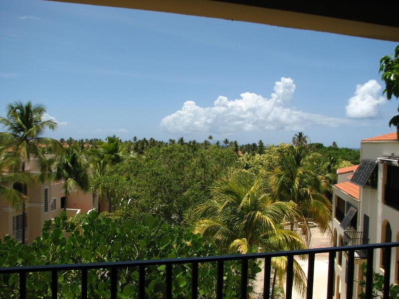 View from the balcony over the tree tops towards the ocean