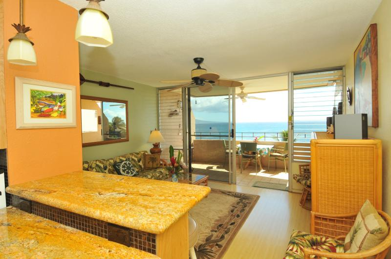 from kitchen looking out onto lanai & ocean with uninterrupted views