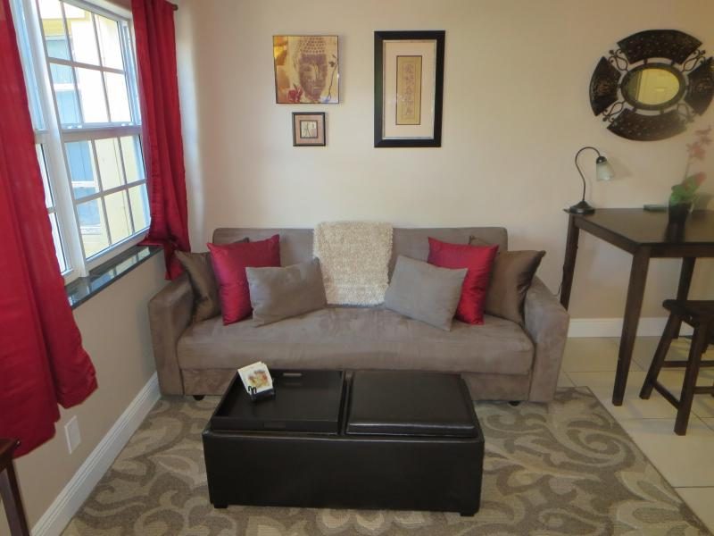 Comfortable living room area with a convertible sofa which sleeps 2 on a full-sized futon