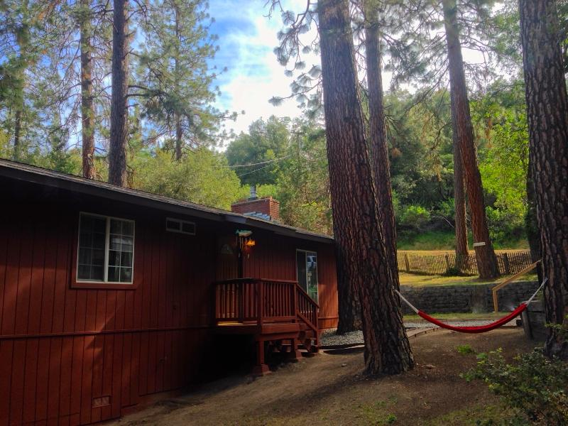 Relax in the hammock under the towering pines