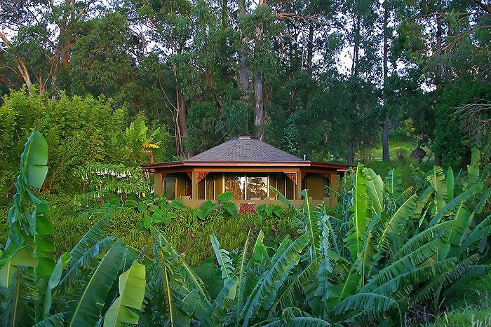 The unique octagonal design of the Aloha Cottage, perched above a bluff, on our 5 acre estate.