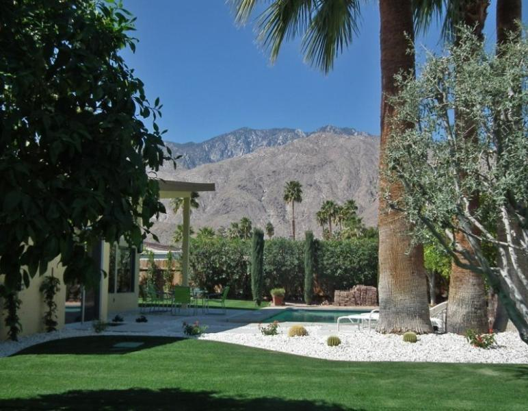 Great Backyard w/Incredible Mountain Views - Scott`s Mid Century Modern Home - Palm Springs - rentals