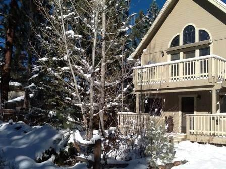 Share Our Joy #1390 - Image 1 - Big Bear Lake - rentals