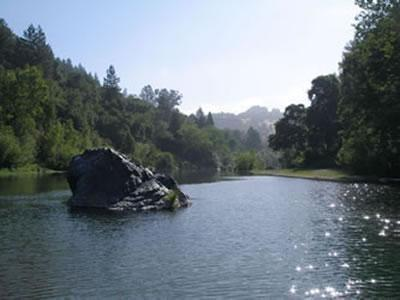Enjoy gorgeous, private views of the Russian River looking toward Dry Creek.