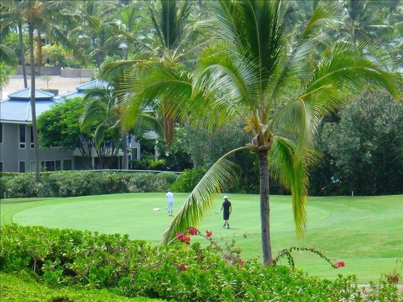 View from Lanai - Kona Country Clubs'  Hole #9