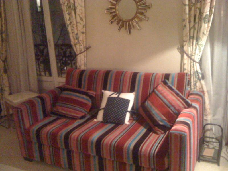 fold out sofa in living room