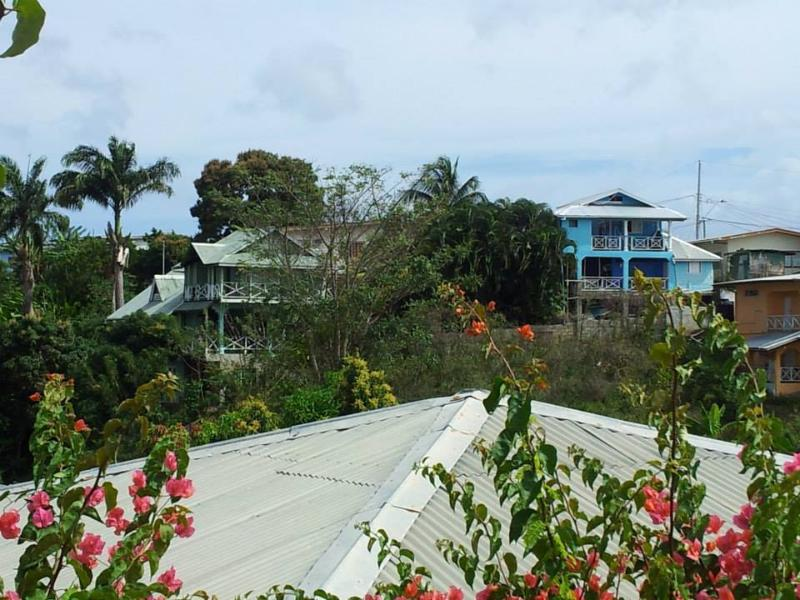 The view from the village to Onelovecottagetobago, the blue house on the right hand side