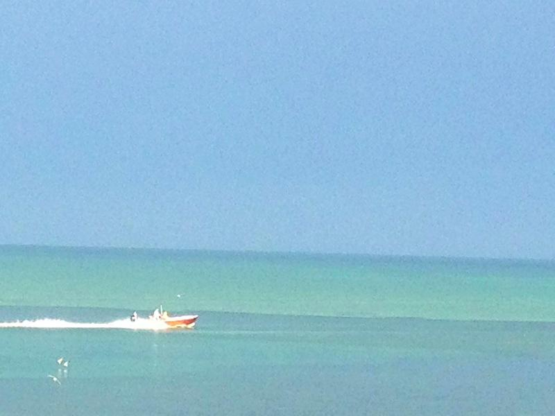 Kaleidoscope of color...from your veranda - One of the best views in Islamorada - Islamorada - rentals