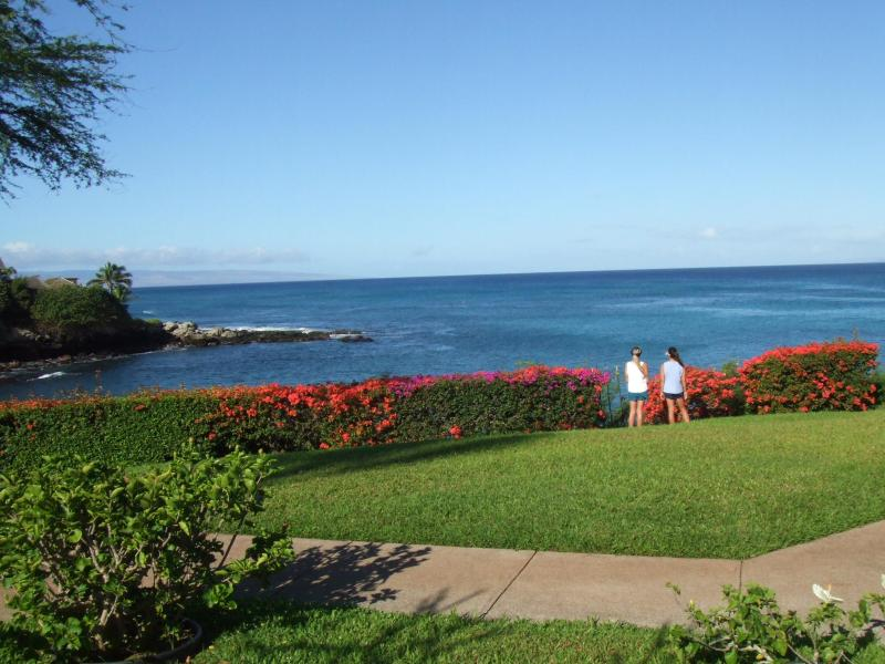 This is the stunning view from your lanai!!  My daughters.