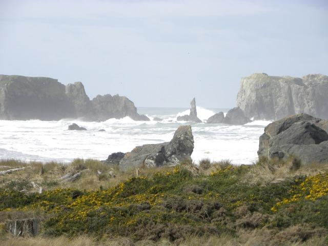 Enjoy Bandon's rugged beach right from your living room!