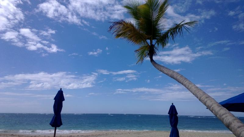 Beautiful Pristine Private Beach with Bar/Restaurant, Showers, Bathrooms, lounge chairs, umbrellas