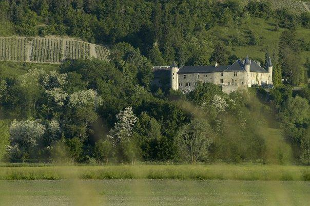 Chateau Philippe as seen from the Combe de Savoie