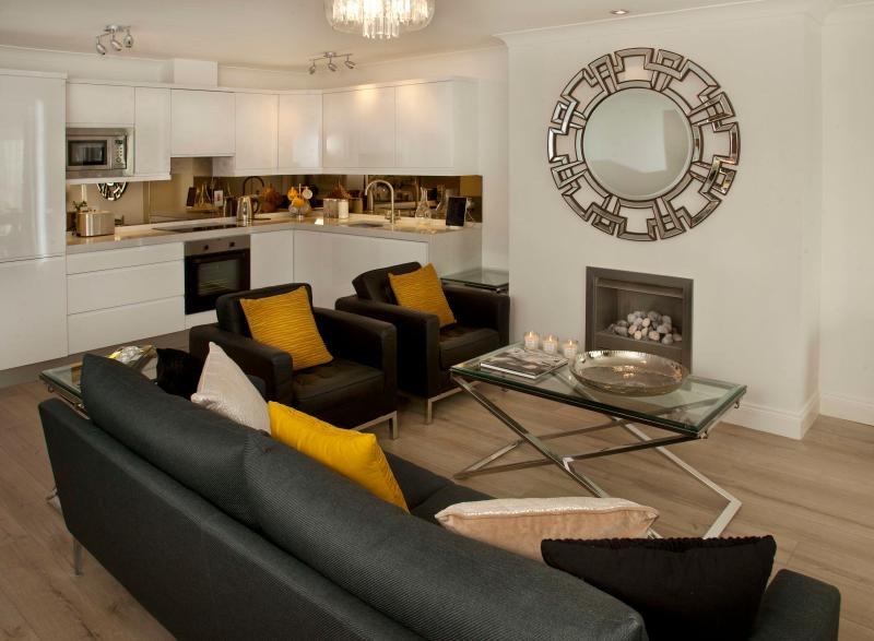 Large open plan living area with gas fireplace
