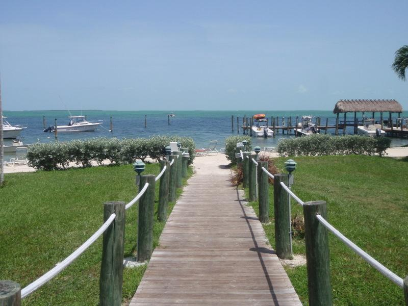 OUR DOCK AREA