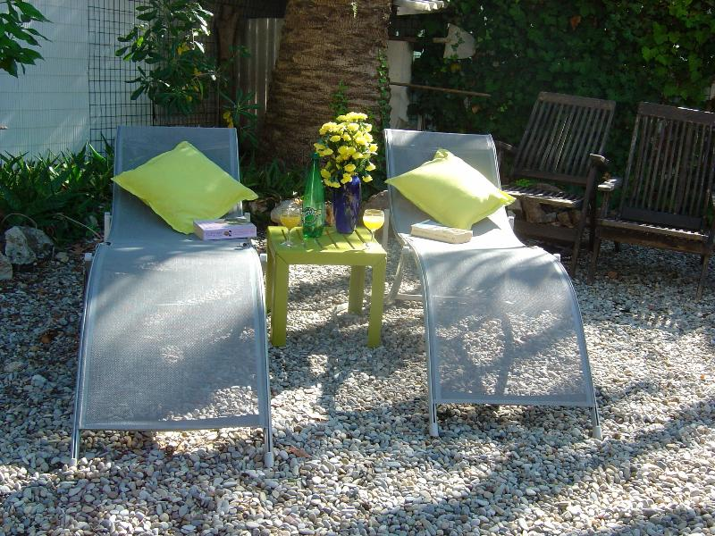 Sunbathe or read in the shade under the palm tree in our totally private secluded garden