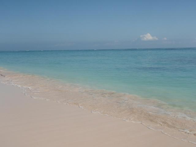 Paradise Condo Steps from the Beach - Beach Ocean view,2 Bedroom Condo,June Special$650 - Punta Cana - rentals
