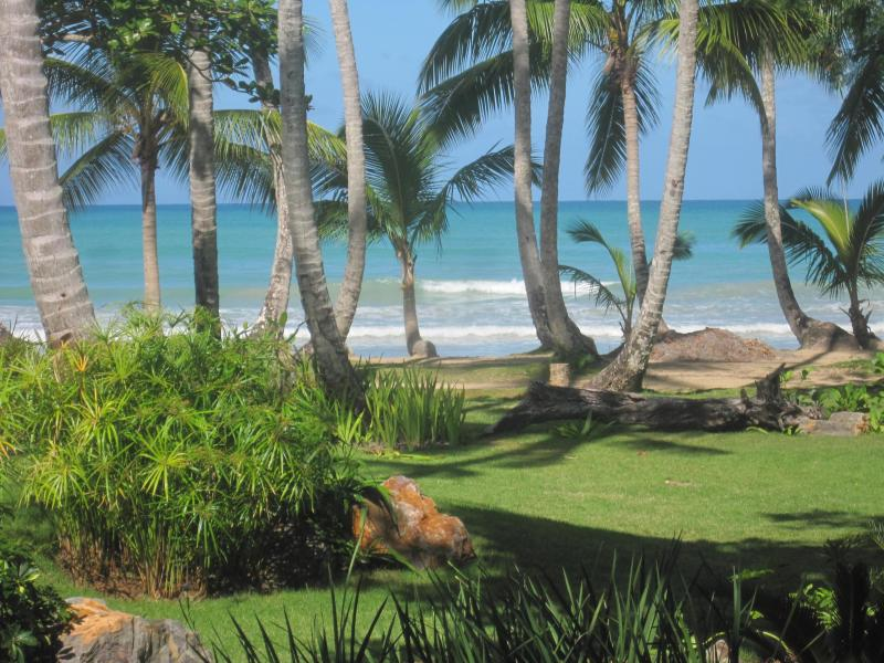 Playa Bonita 3C1 - beautiful view and easy beach access from your terrace!