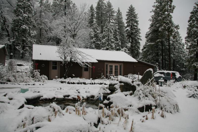 Guest House in Snow
