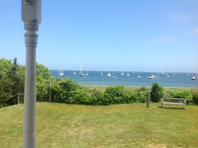Best View on the Vineyard