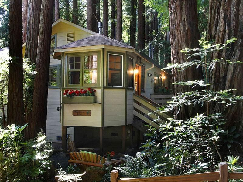 BLACKBERRY BLISS - Image 1 - Russian River - rentals