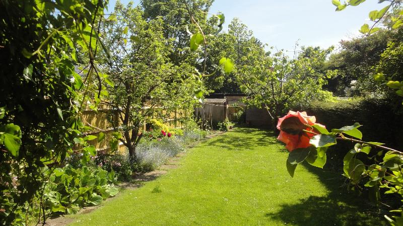 The lovely secluded south facing rear garden.