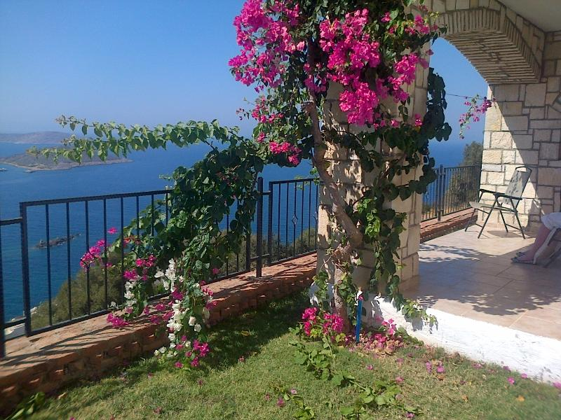 Panaromic view from your garden!