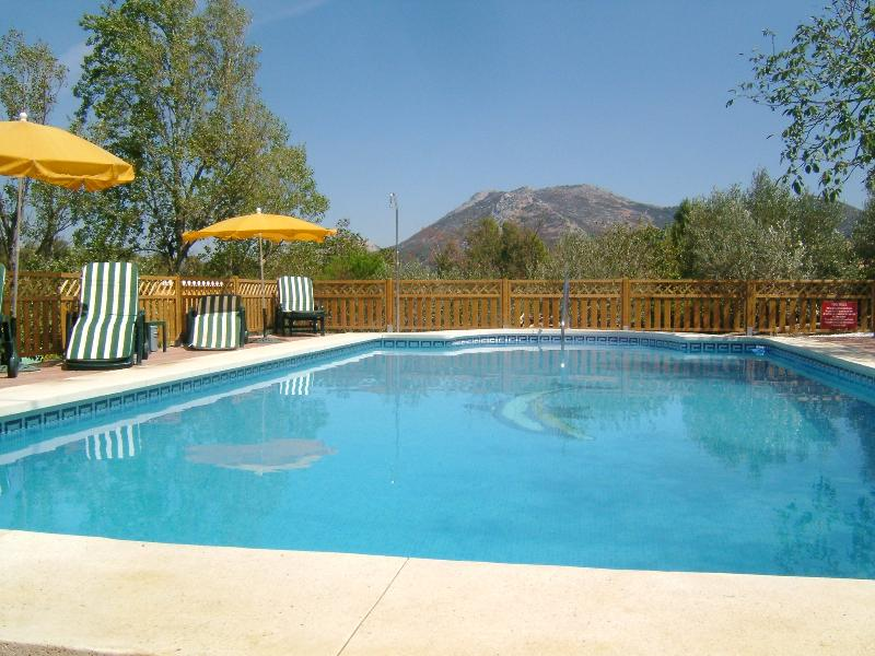The fully tiled heated swimming pool with sunbeds