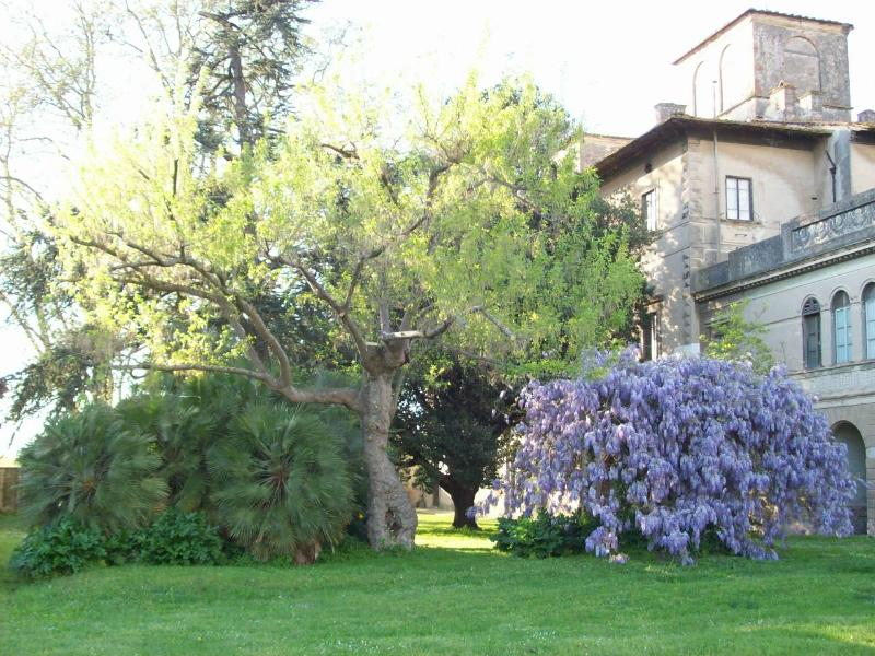 This beautiful historic house will be your home in Tuscany