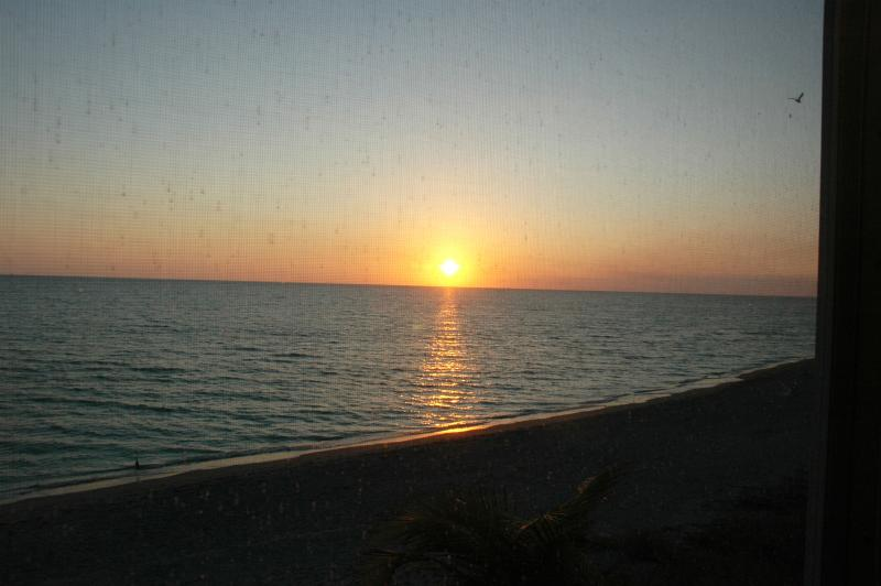Sunset from Lanai - Siesta Key, Closest Condo to Gulf; Modernized 2012 - Sarasota - rentals