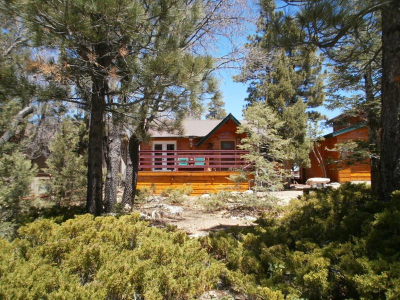 Welcome to Chalet Devora - CHALET DEVORA IS NEXT TO BEAR MTN SKI RESORT/ ZOO - Big Bear Lake - rentals