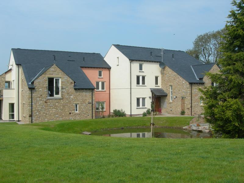 Burrow Meadows - view of the ornamental pond