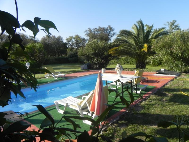 Garden and swiming pool
