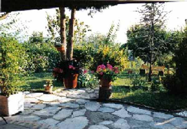 The shady terrace looking out to the garden