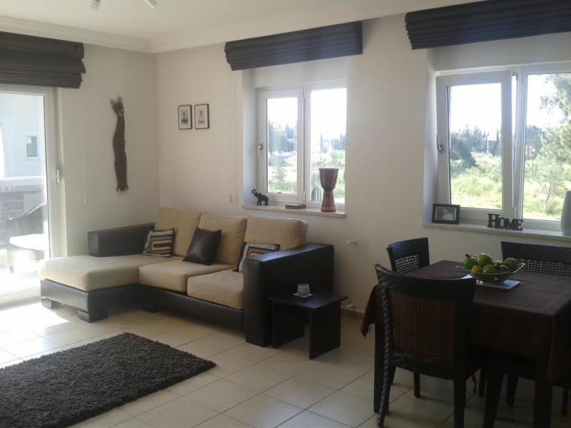 Beautifully furnished apartment with private balconies
